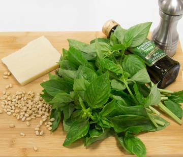 Gary Macleans Top Tips - Pesto