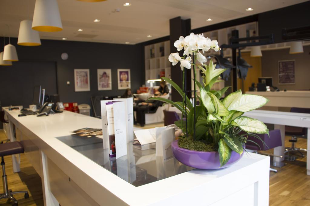 Flowers in Amethyst Professional Hair Salon.