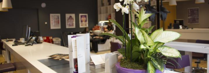 Work Space - Amethyst Salon